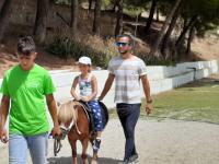 cavallo35