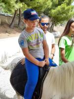cavallo40