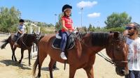 cavallo63
